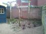 Project tuinrenovatie te Zundert